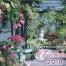 Procumbens Fuchsias